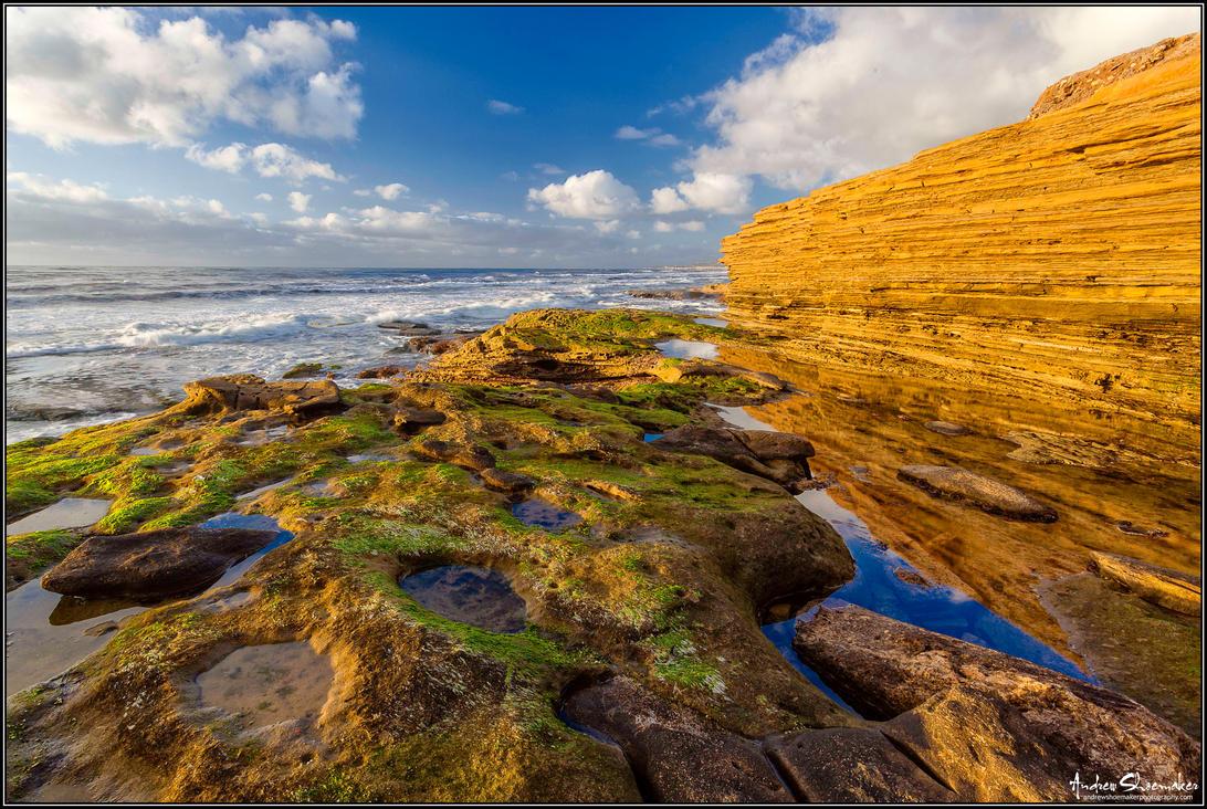 Coastal Garden by AndrewShoemaker