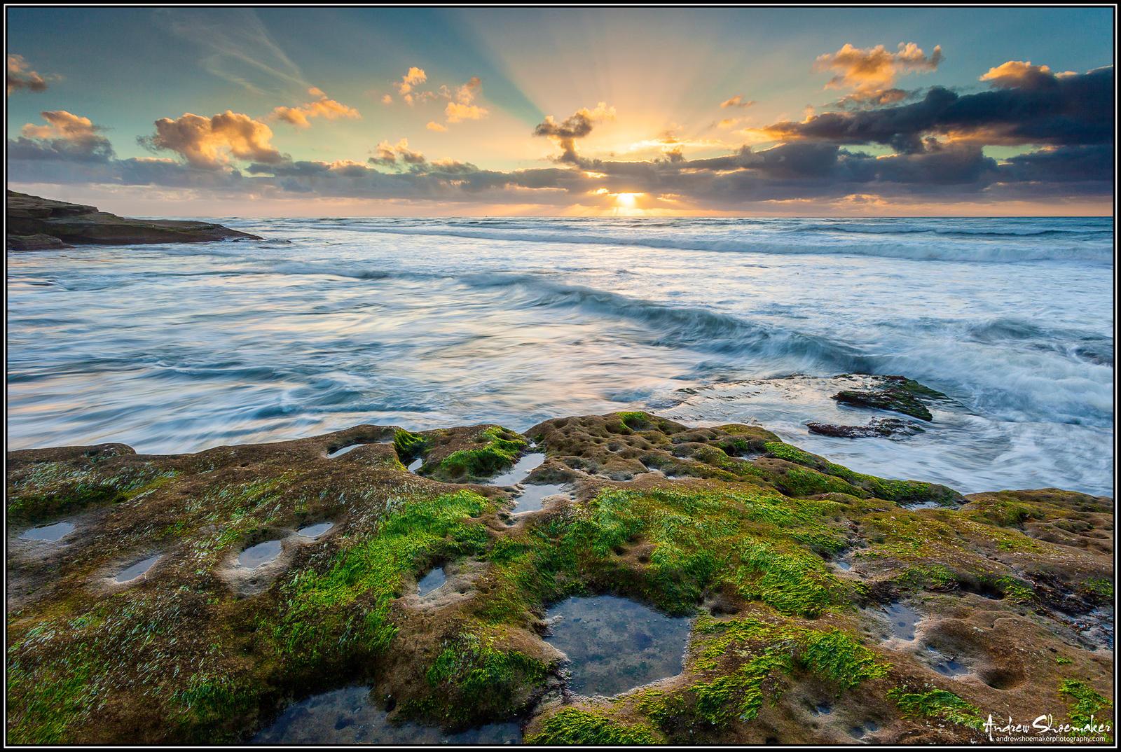 Coastal Insight by AndrewShoemaker
