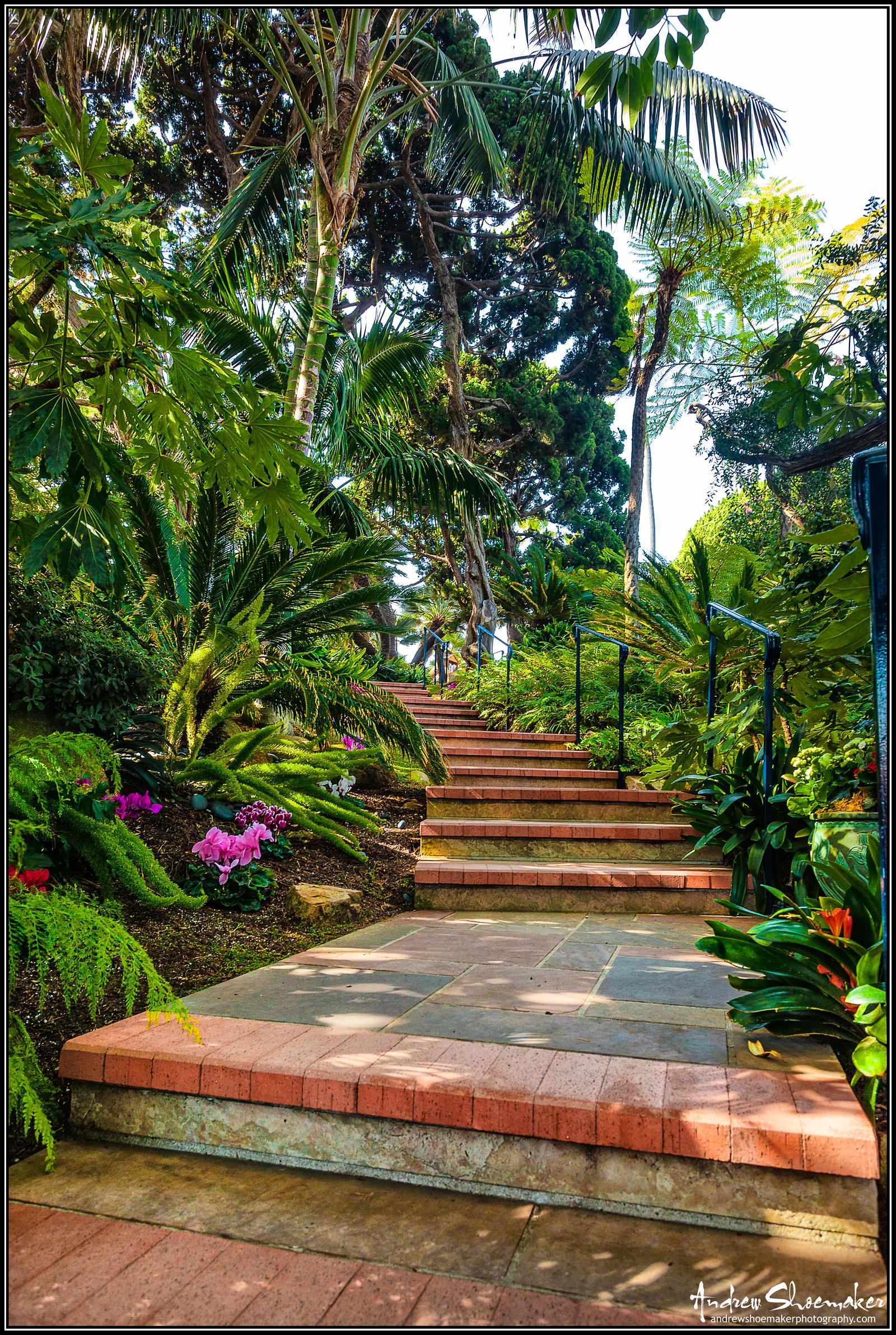 Meditation Garden By Andrewshoemaker On Deviantart