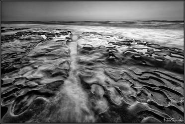 Synergy (Black and White Version) by AndrewShoemaker