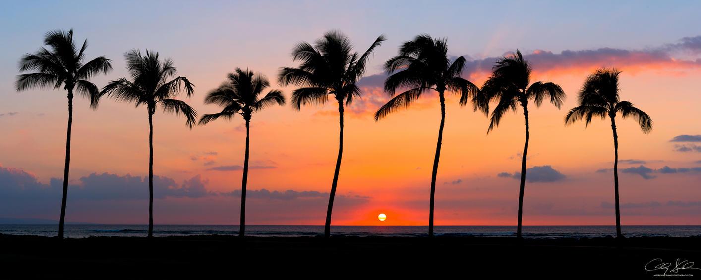 Maui Dreamin' by AndrewShoemaker
