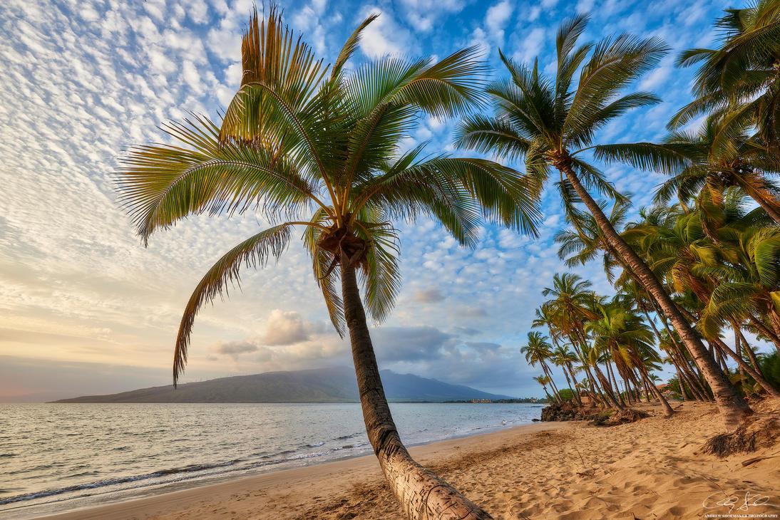 Maui Zen by AndrewShoemaker