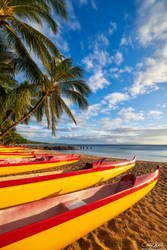 Paddle Out by AndrewShoemaker