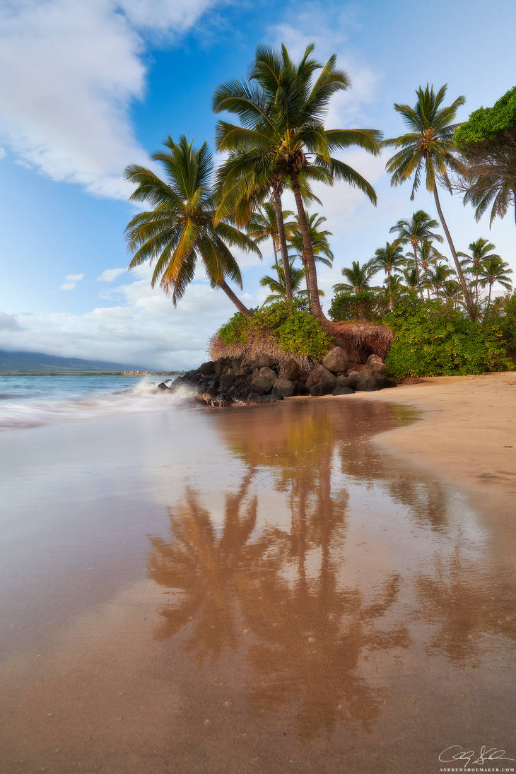 Maui Mirror by AndrewShoemaker