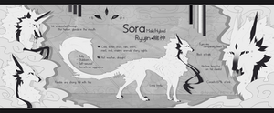 Sora Ryujin - [Ref sheet] by Shinzessu