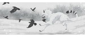 - Snowww