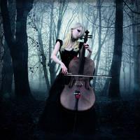 - Butterfly Symphony - by WargusEstor