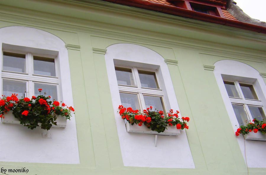 Prozori koji govore - Page 2 Juliet__s_window_by_moonik9-d3nq6om