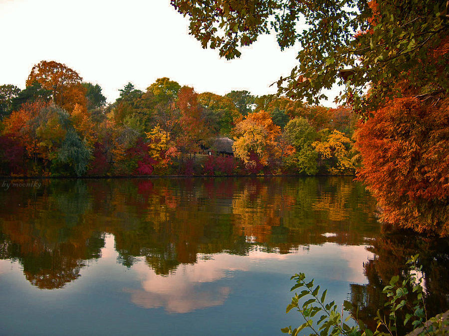 Autumn on the lake 2 by moonik9