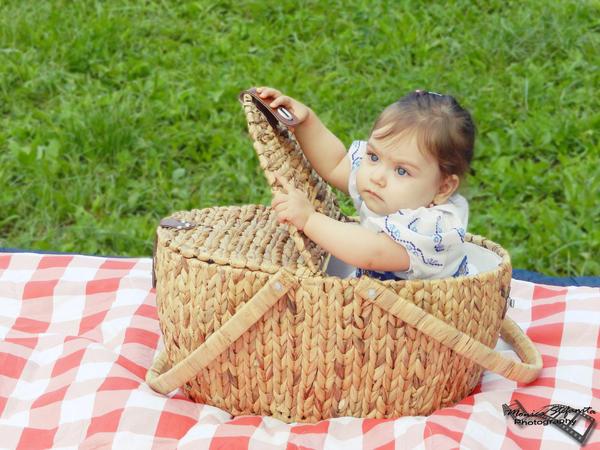 Delicious picnic basket by moonik9