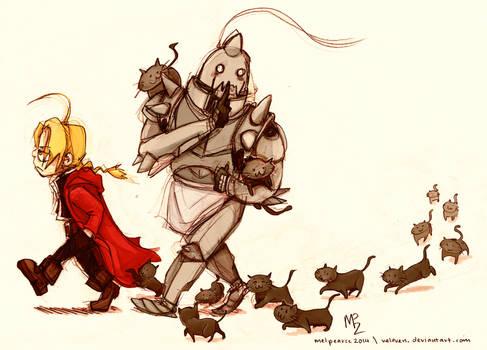 FMA - 13 cats