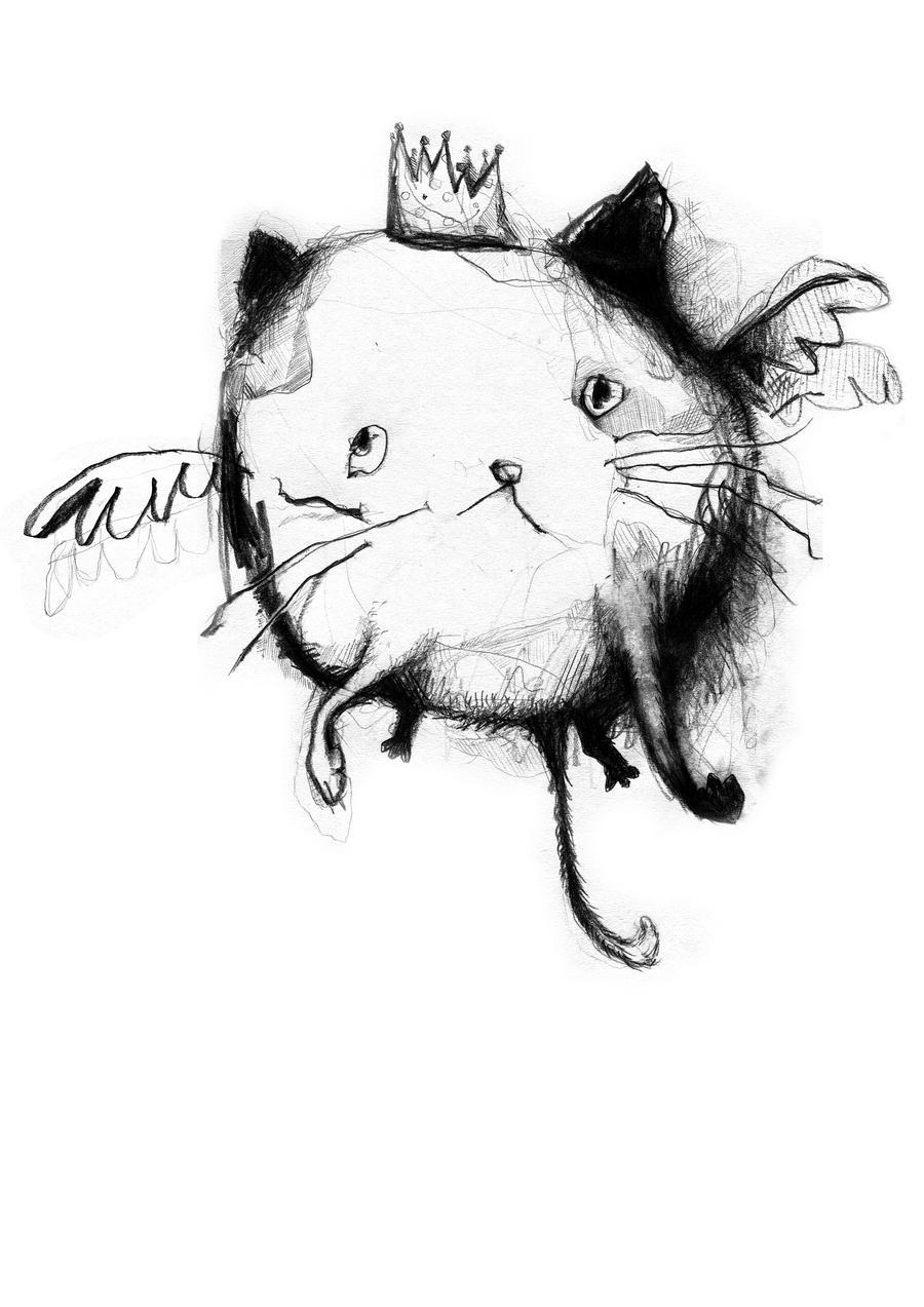 Cat for KA