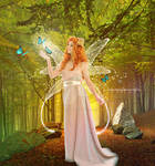 Butterflies and fairy
