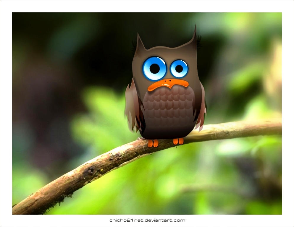 Owl by chicho21net