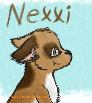 Nexxi
