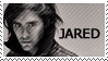 AF :: Jared Stamp by WishmasterKami