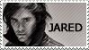 AF :: Jared Stamp by WishmasterKami