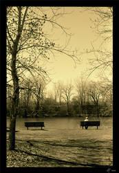 Vieillir seul by Maliverne