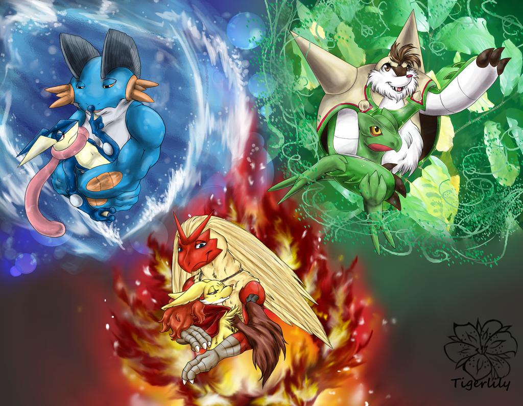 Pokémon 3Hoenn 252386  Wallpaper Games Maker