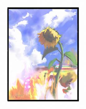 ''Sunflower in rays of summer'' by Jakub Mojrzesz