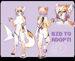 Cat carp - auction adopt CLOSED