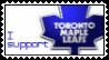 Go Leafs Go by holls