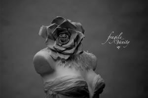 Fragile Vanity '5