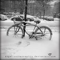 bike in march