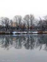 Mirror by Shiranui