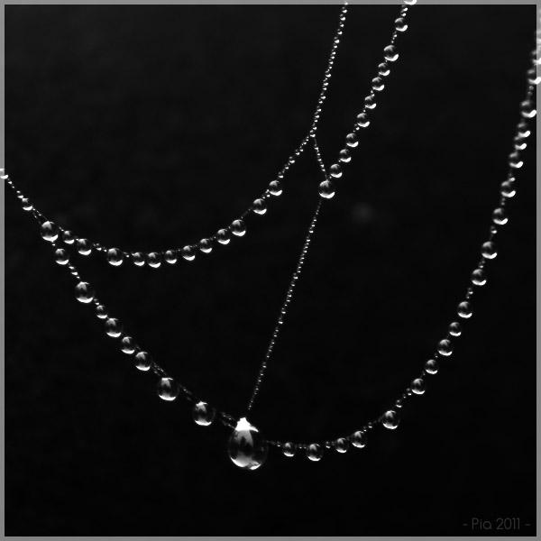Drops by Shiranui