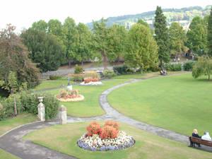 A Grassy View
