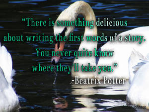 The first words of a story-Potter