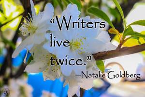 Writer's life -Goldburg