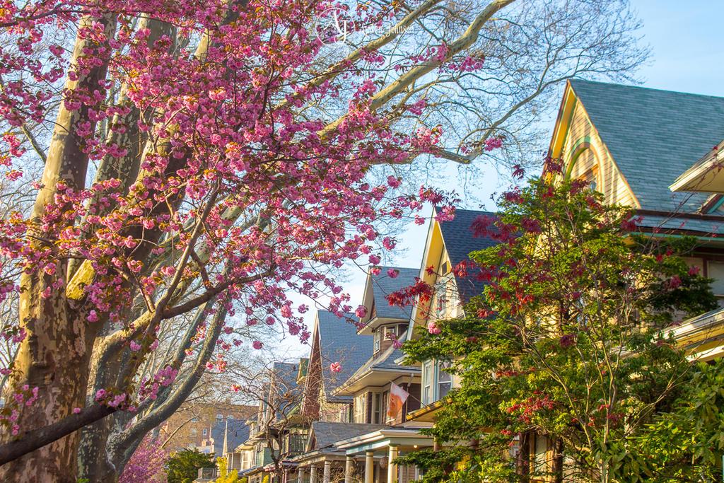 Spring Colors by adenisej25