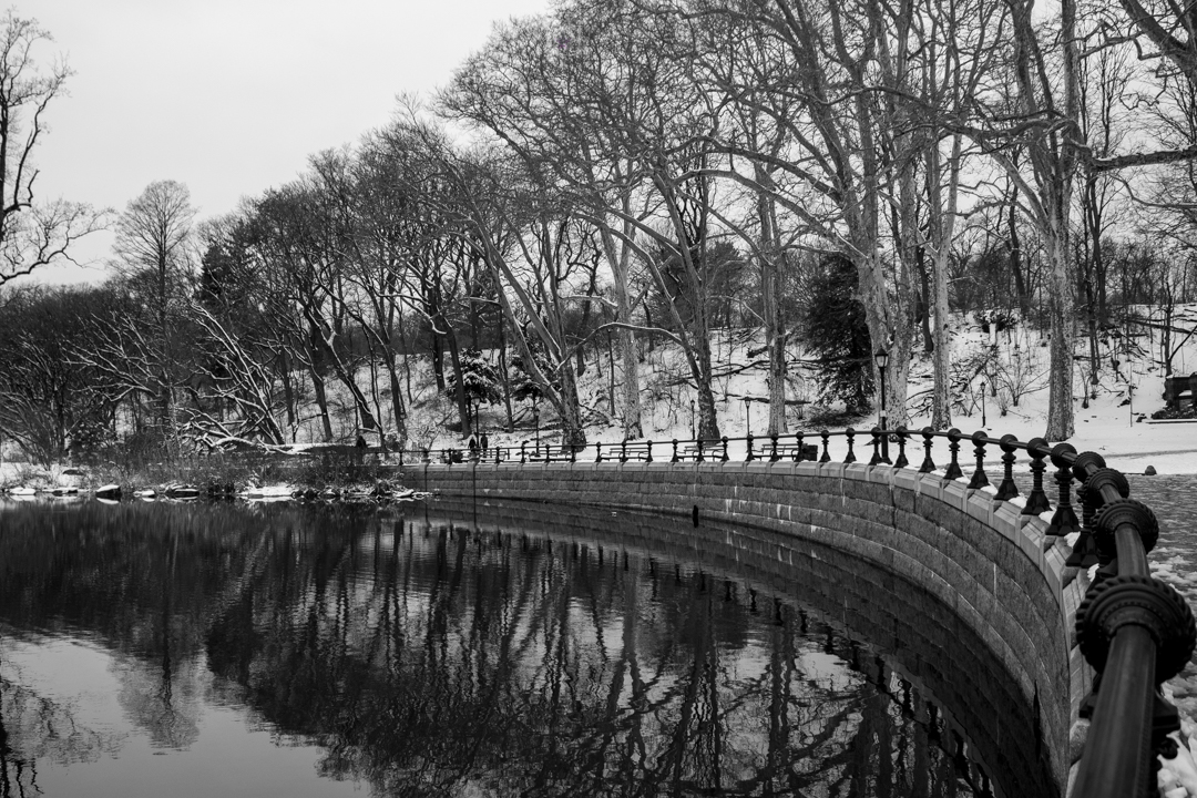 Prospect Park by adenisej25