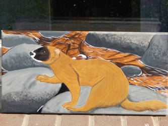 Siberian Weasel Painting by WeaselWomanCreations