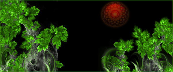 More than one fractal