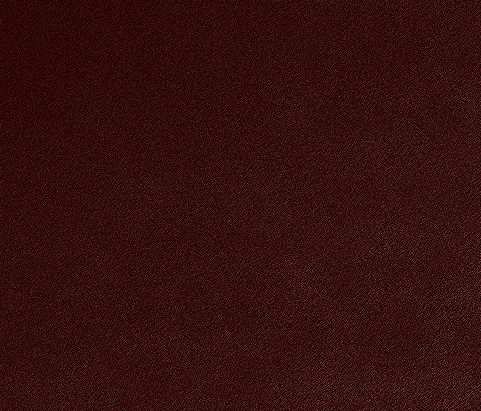 Sandpaper/Leather texture by alexbros64