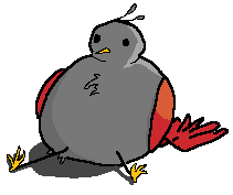 Here's a bird by Ialmostquitonthis