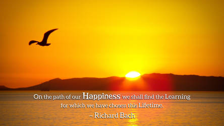 Richard Bach Quote 3 by RSeer