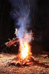 Burning of the wicker man 10