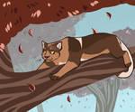 DotW - MOUNTAIN TREE LION