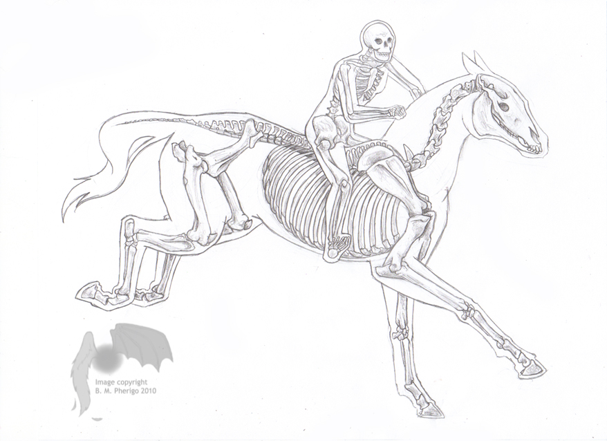 Horse and rider by tsenny on deviantart horse and rider by tsenny ccuart Gallery