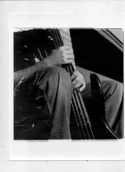 Bass by MurasakiHana