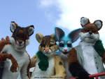 Vixen Made Fursuits Group 2