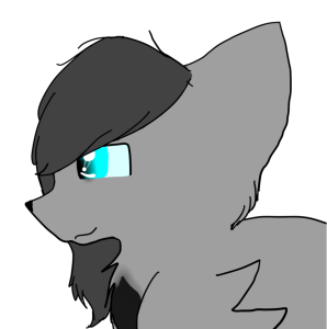 Asking-Cinderpelt's Profile Picture