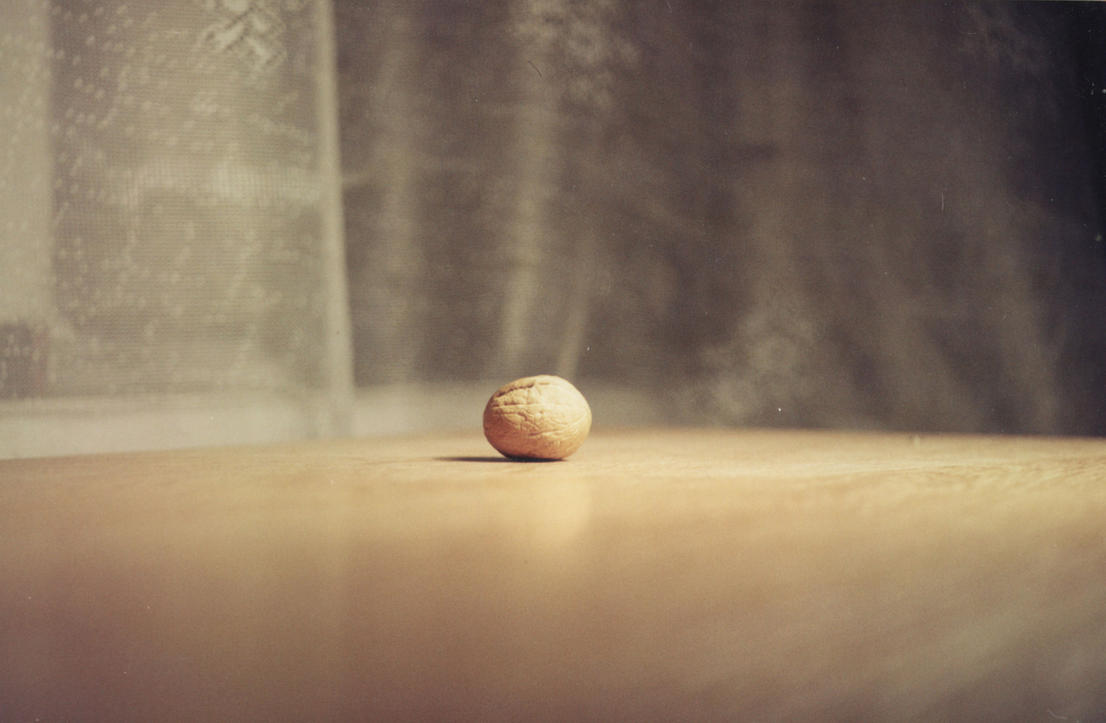 lonley_Greek_nut by ExScout