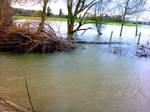 Winter Flooding near Peter\'s Bridges