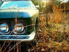 Car. by sunshine-hair