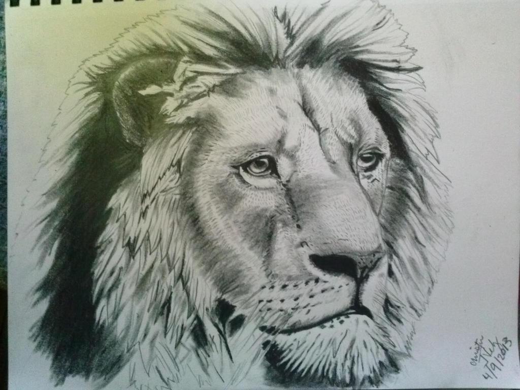 more detailed lion sketch